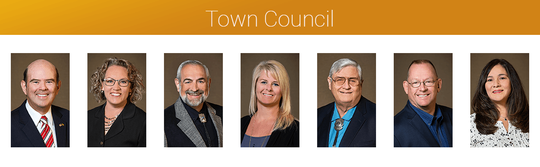 TOWN-COUNCIL-HEADSHOT-WEB-BANNER 2020